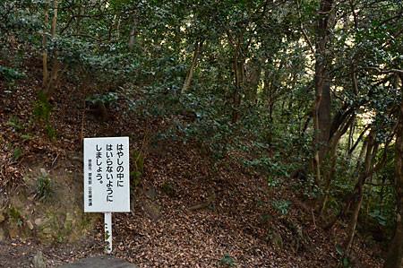 f:id:conokix:20110217203333j:image