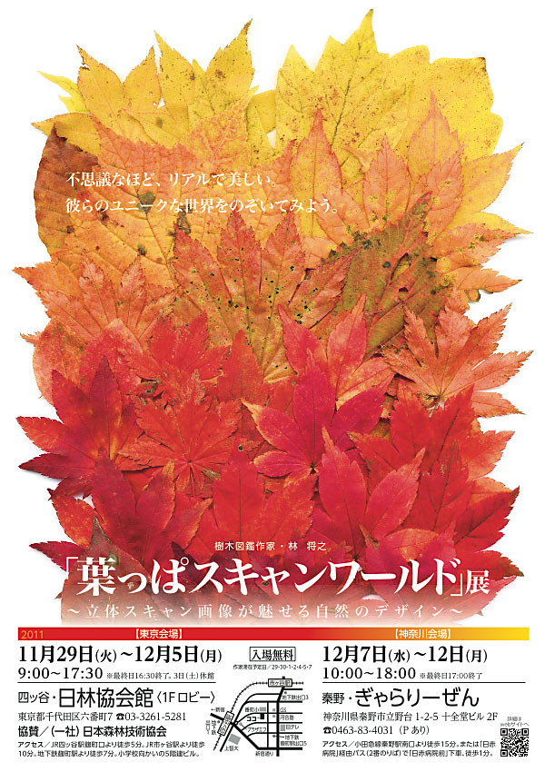 f:id:conokix:20111121181448j:image