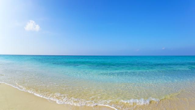 美しい海の写真