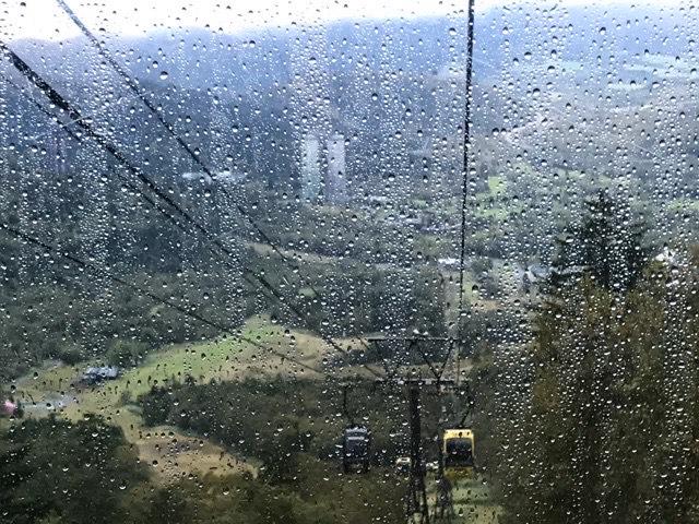 ゴンドラから見た景色