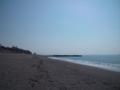 桂浜の西裏側