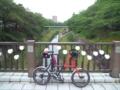 梅雨に入った山崎川。緑が濃くなったね。