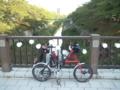 夏休みの山崎川。セミがスゴイネ!