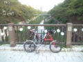 9月の山崎川。まだまだ葉っぱは夏模様。
