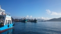 鳥羽港の朝