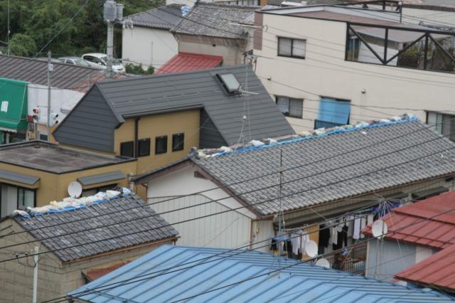 f:id:coop_fukushima_oita:20110828173341j:image:w640:left