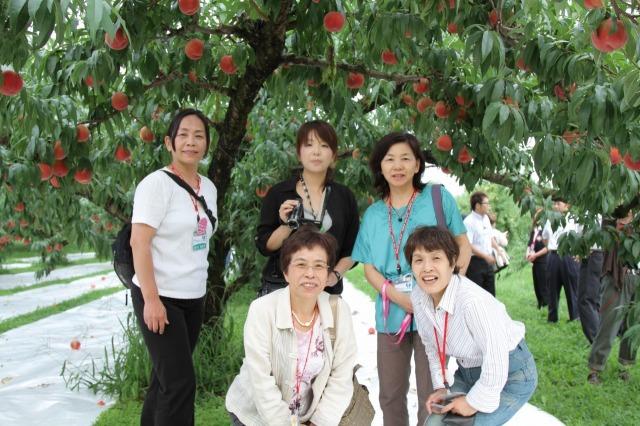 f:id:coop_fukushima_oita:20110828185658j:image:w640:left