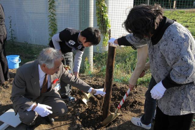 f:id:coop_fukushima_oita:20111208111309j:image