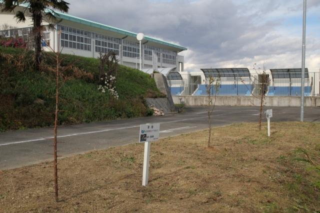 f:id:coop_fukushima_oita:20121214114953j:image