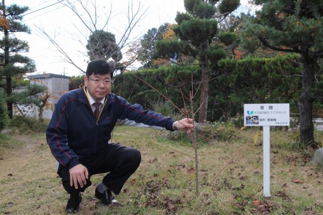 f:id:coop_fukushima_oita:20121214114959j:image