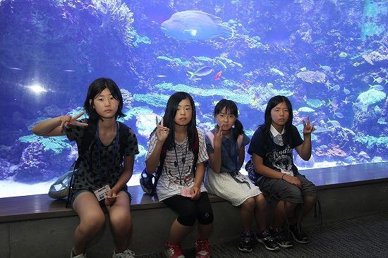 f:id:coop_fukushima_oita:20130824153547j:image