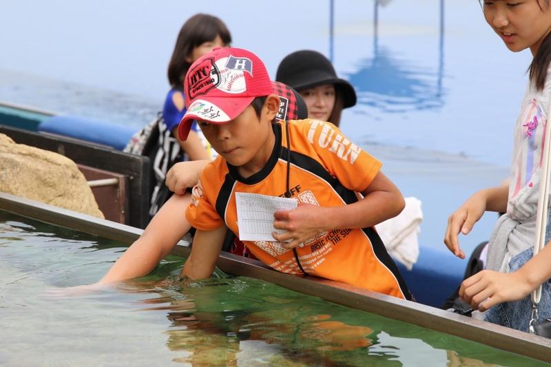 f:id:coop_fukushima_oita:20160808143341j:image