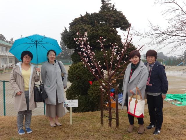 f:id:coop_fukushima_oita:20170321163118j:plain