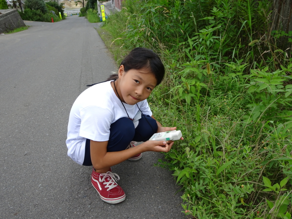f:id:coop_fukushima_oita:20170823135603j:plain