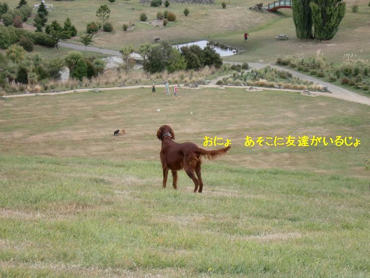 f:id:coppa06:20100320115331j:image