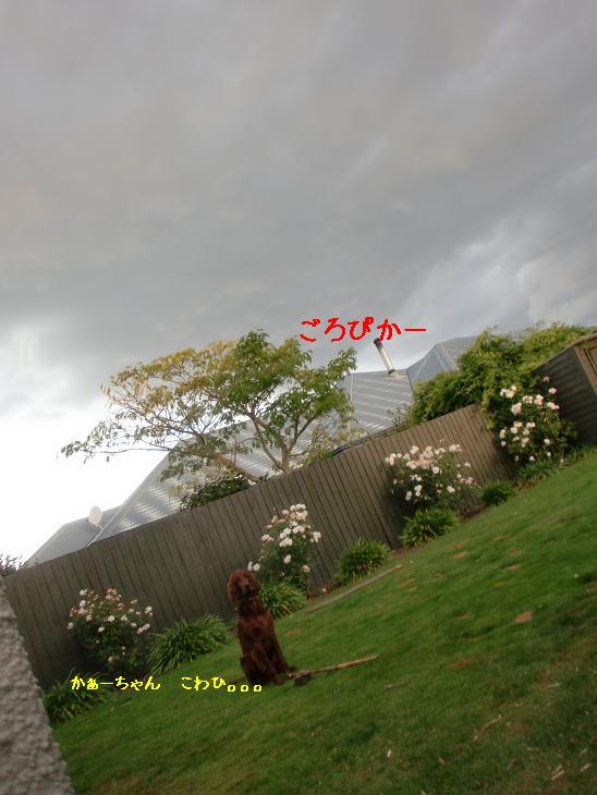 f:id:coppa06:20100324145829j:image