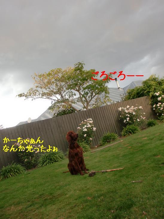 20100324145840