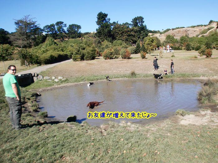 f:id:coppa06:20100607185931j:image