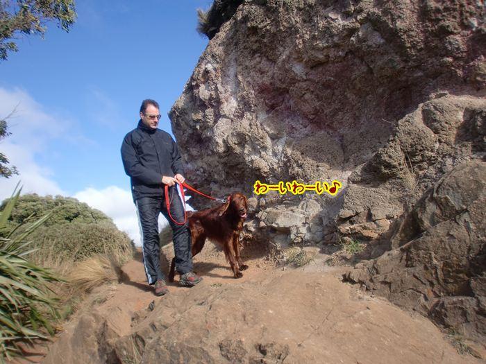 f:id:coppa06:20100617165133j:image