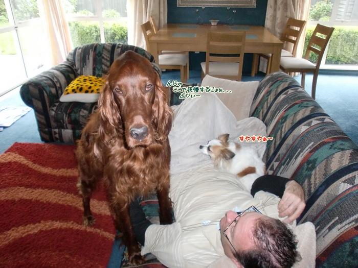 f:id:coppa06:20111027130607j:image
