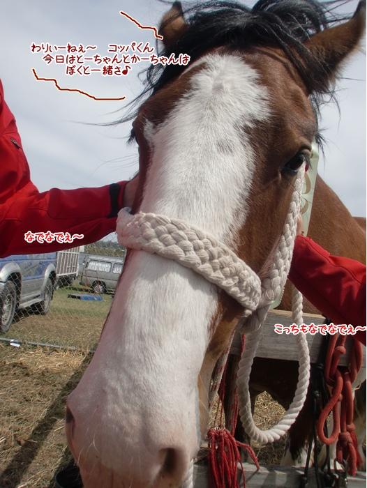 f:id:coppa06:20111115144640j:image
