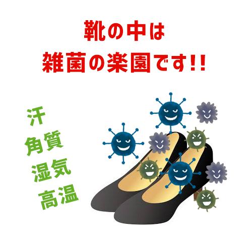 靴の中の雑菌