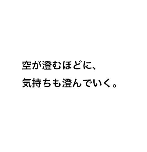 f:id:copywritism:20160506194212p:plain