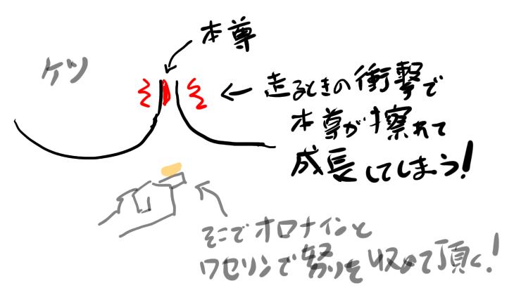 f:id:corgi-eric:20210426061032p:plain