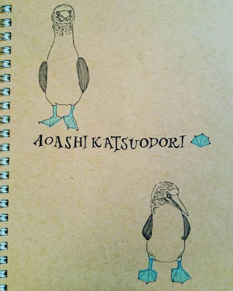 f:id:corinka_blog:20160702221809j:plain