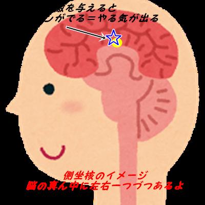 f:id:corocoro34:20170401144255p:plain