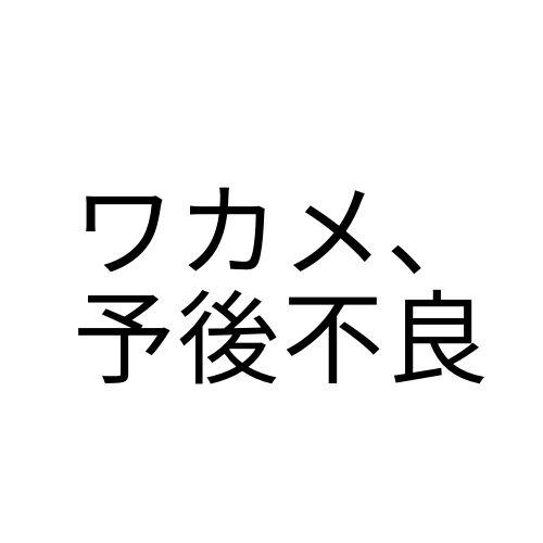 f:id:correct-me:20210422115607j:plain