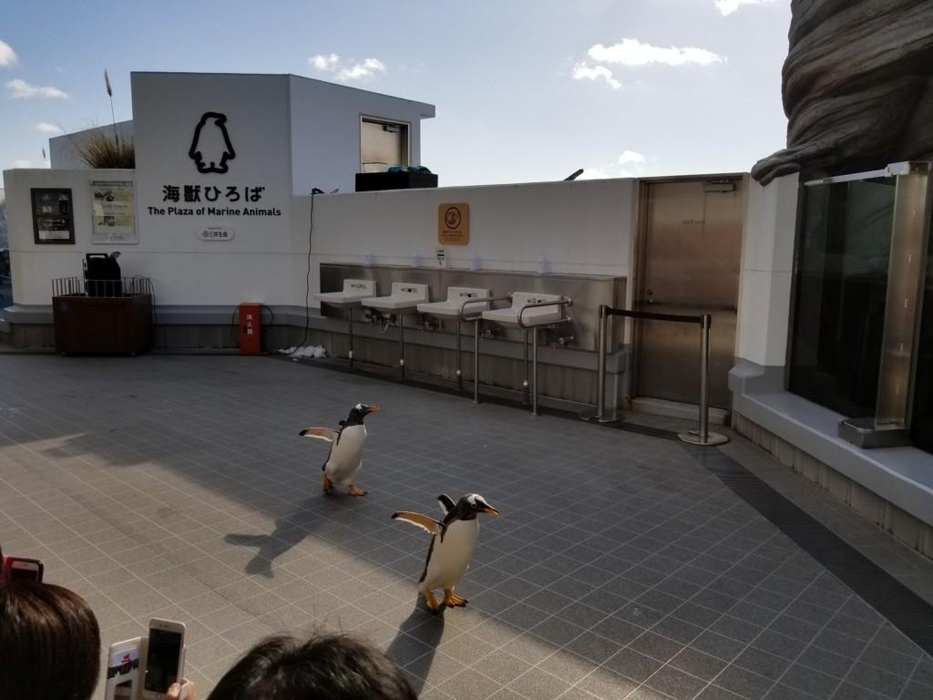 f:id:cosachi:20180104103310j:plain