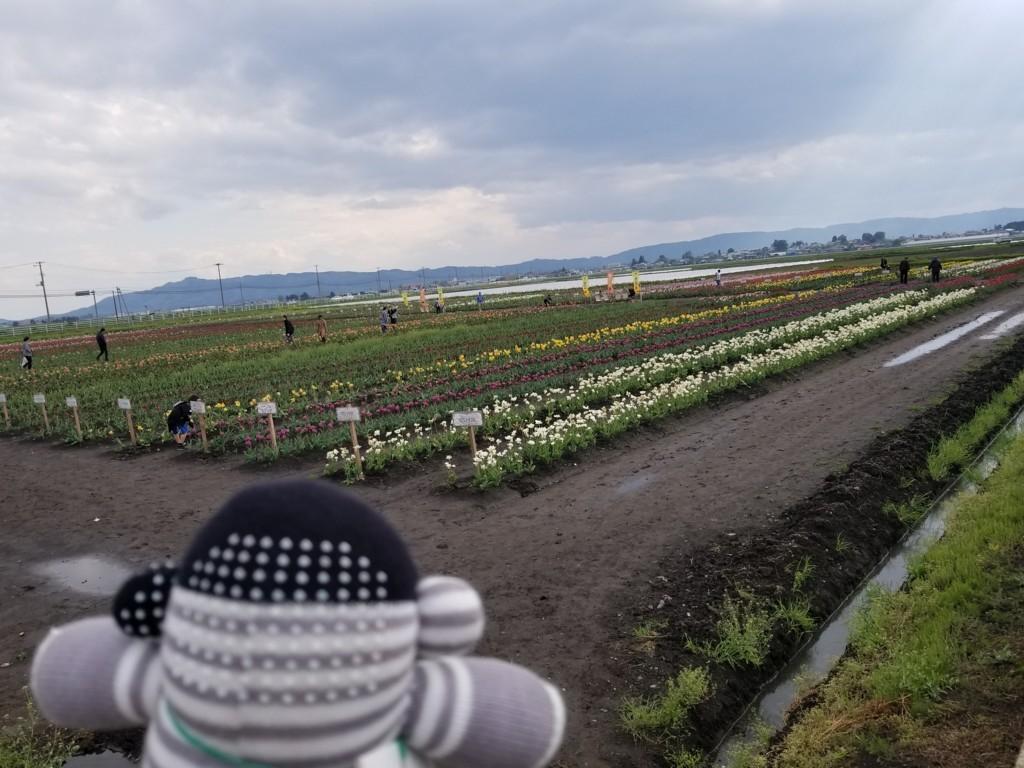f:id:cosachi:20180504152633j:plain