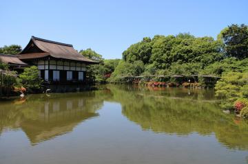 平安神宮の神苑 池2 6月