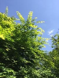 京都市蹴上浄水場の一般公開