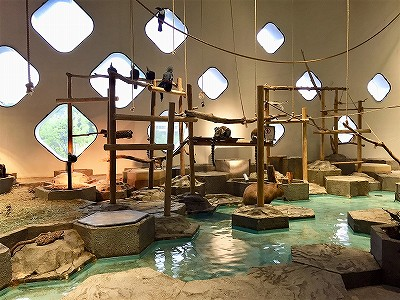 ニフレル 鳥やカピパラなどが遊ぶ部屋