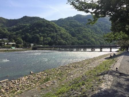 京都 嵐山の渡月橋と川と新緑の景色(5月)