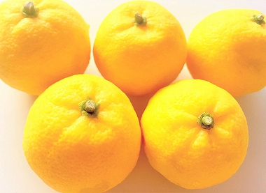 ゆずの果実