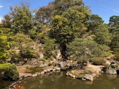 仁和寺 御殿の庭にある池