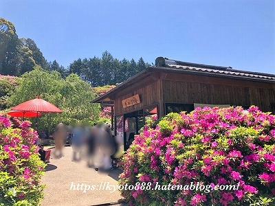 三室戸寺のお食事処 花の茶屋