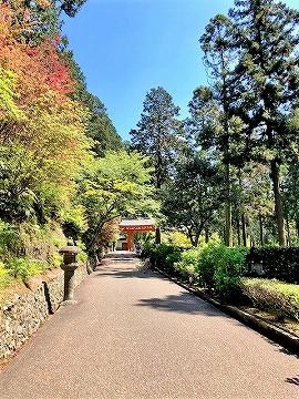 三室戸寺の受け付けから入ったところの景色