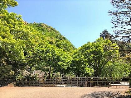 三室戸寺の美しい新緑の景色