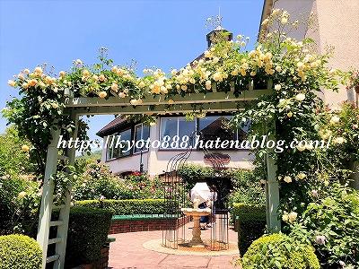 神戸布引ハーブ園 ローズシンフォニーガーデンの薔薇のアーチ
