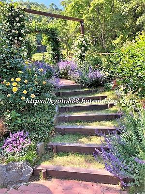 神戸布引ハーブ園 絵画のようなハーブや花の庭