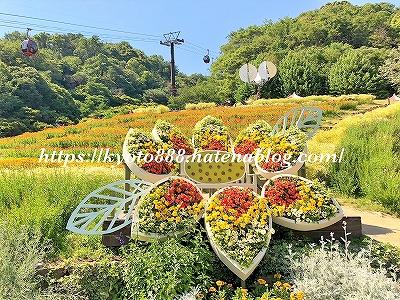 神戸布引ハーブ園 風のフラワー園