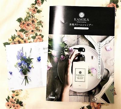 KAMIKA(カミカ)オールインワン黒髪クリームシャンプーの案内書