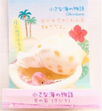 Splash 貝の可愛い置物 小さな海の物語 貝の家(沖縄土産)