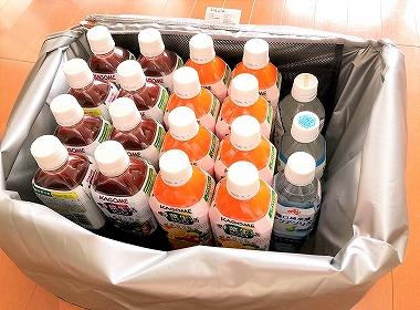 サーモス レジかご保冷バッグにペットボトルを入れる