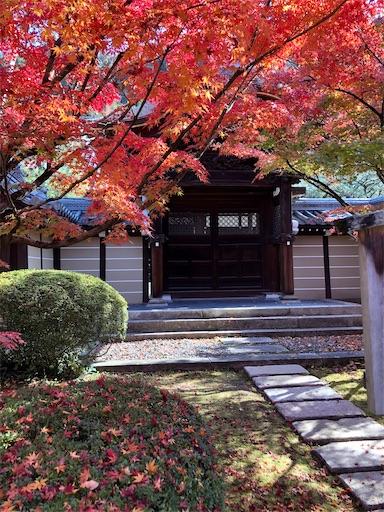 永観堂 秋のモミジの風景