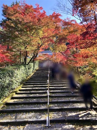 永観堂の階段と紅葉